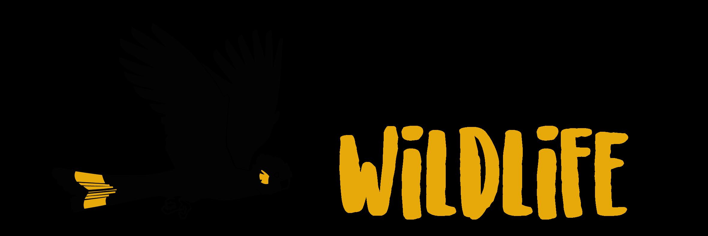 D'Aguilar Wildlife